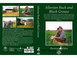 Siberian Buck and Black Grouse